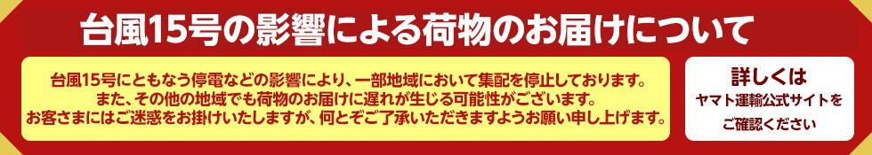 九州地域大雨の影響